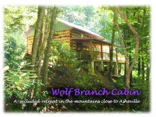 Wolf Branch Cabin 34 miles North of Downtown Asheville - Wolf Branch Cabin, Privacy Abounds near Asheville - Asheville - rentals