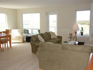 Dogs Friendly oceanview luxury condo! - Westport vacation rentals
