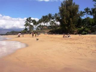 Hale Ili Ili #A Kamaole Beach 3/3 Oceanfront Steps from Charley Youngs Cove - Kihei vacation rentals
