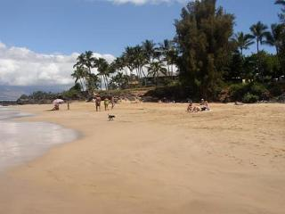 Hale Ili Ili #C Kamaole Beach 1 Oceanfront 2/2 Aug 7-29 special rate $299 NT - Kihei vacation rentals