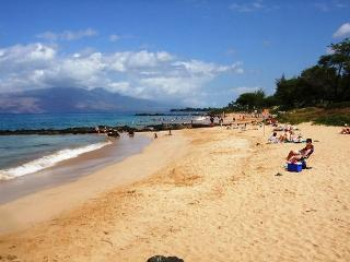 Kamaole Sands #10-111 Ocean View Inner Court Ground Floor 1/2 Sleeps 4 - Kihei vacation rentals