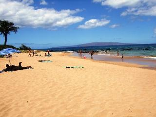 Keawakapu Views #206 across from the best beach in Kihei! Great Rates 2B/1B - Kihei vacation rentals