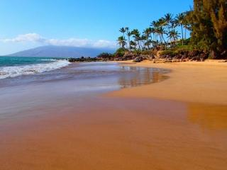 Kihei Alii Kai A305 Closest building to Kamaole Beach #1.  1B/1Ba Sleeps 4 - Kihei vacation rentals
