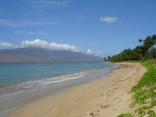 Waiohuli Beach Hale #D-121 Oceanfront Complex. Great Rates! Sleeps 4! - Kihei vacation rentals