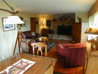 HARBOR CONDOMINIUMS #8 - Lake Placid vacation rentals
