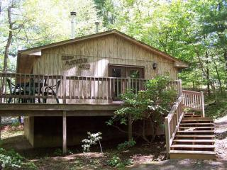 Family-Friendly Cabin near Blue Ridge Parkway - Pet Friendly 2BR Cabin in Blue Ridge Mtns of VA - Waynesboro - rentals