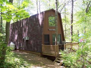 Secluded Mountain Cabin by Pool - Rockwood - Staunton vacation rentals