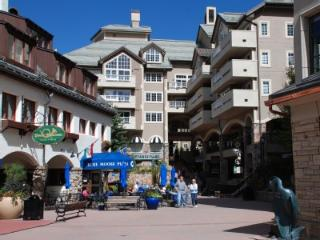 5 Star Ski-in/Ski-Out Condo - Beaver Creek Village - Beaver Creek vacation rentals
