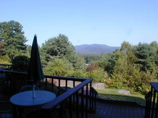 CHEROKEE TRAIL 4 - Lake Placid vacation rentals