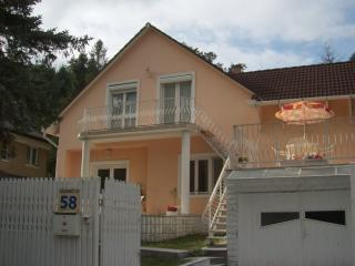 Hungarian Wine-Country Villa near Cave-Bath! - Miskolctapolca vacation rentals
