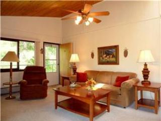 Idyllic 1 Bedroom/1 Bathroom House in Whitefish (18AU) - Whitefish vacation rentals
