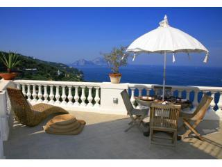 Casa Vittoria terrace sea view on Capri Island - Casa Vittoria-Amazing Sea View, Astonishing style - Sorrento - rentals