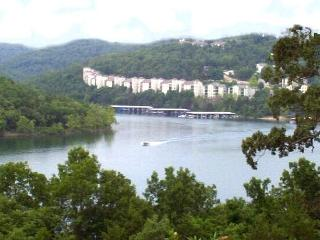 Branson Fabulous Lakefront Condo! Secluded Resort! - Missouri vacation rentals