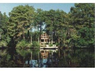 House from river - Secluded riverfront home near Georgia's coast! - Saint Marys - rentals