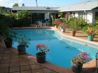Sharon's sparkling pool surrounded by tropical flowers - Sharon's Serenity Bed and Breakfast - Kailua - rentals