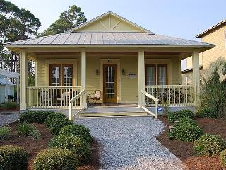 Last minute /August 23-30th/ $800.00 all included - Seagrove Beach vacation rentals