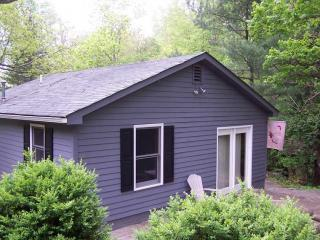 One Bedroom Virginia Mountain Cabin - Romantic Cabin in Blue Ridge Mountains - Barnwood - Tyro - rentals