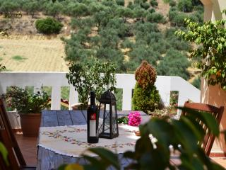Olive Farm Villa - Chania vacation rentals