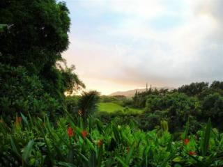 Hale  'O  Kuawa  North Shore View  Apartment - Kilauea vacation rentals