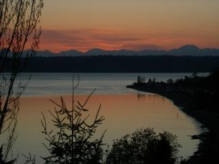 Sunset from the deck - Soundview Cottage Seattle B&B - Seattle - rentals