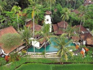 Ubud: Villa Tugu Pejeng with 5 bedrooms - Ubud vacation rentals