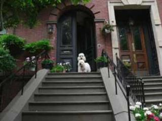 Beacon Hill Bed & Breakfast - 1 SPACIOUS Room - Boston vacation rentals