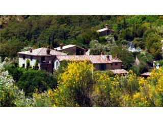 Prato di Sotto - Umbria vacation rentals