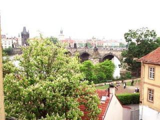 Most Romantic Apartment- Great reviews! - Prague vacation rentals