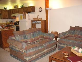 104 J Buffalo Ridge - Ponds - Silverthorne vacation rentals