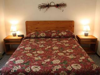 201 H Dillon Valley East - Dillon vacation rentals