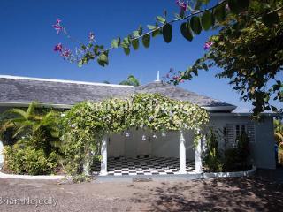 Serendipity - Montego Bay vacation rentals