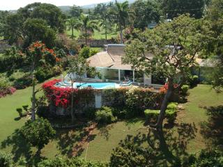 Skylark - Montego Bay vacation rentals