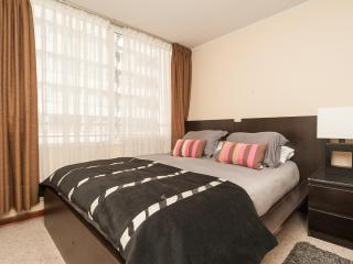 Vacation Apartments in the heart of Santiago Chile - Santiago vacation rentals