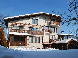 Catered Ski Chalet Diana, Bansko - Bansko vacation rentals