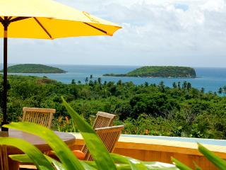 Los Arcos -  the most coveted Vieques estate - Vieques vacation rentals