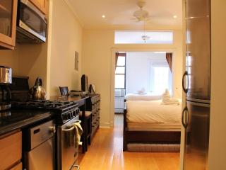 Luxury Aprtment with two Queen size beds - Manhattan vacation rentals