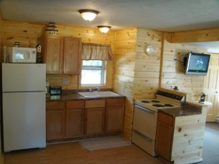 Northwoods Charm Cabin @ Family Fishing Resort - Hines vacation rentals