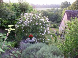 LeClos-Charming Centuries-Old Wine Maker's Cottage - Amboise vacation rentals