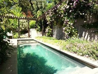 Luxury Hillside Haven W/ Spa & Plunge Pool - California Wine Country vacation rentals