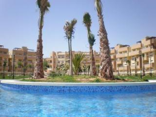spain pool - Luxury 3 bedroomed apartment on golf resort Murcia - Region of Murcia - rentals