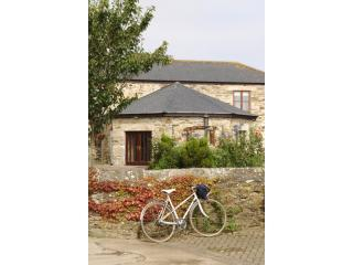 Trengove Farm Cottages, near Portreath and Illogan - Portreath vacation rentals