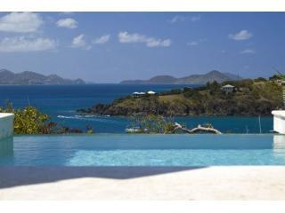 View off Oceana pool towards St Thomas - Oceana luxury  6 bed villa Great Cruz St john USVI - Saint John - rentals