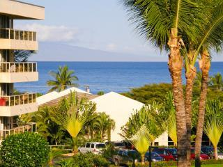 Ocean View, Steps to Beach, Modern Tropical Style - Kihei vacation rentals