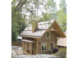 Burgess Lookout Guest Cabin - Field vacation rentals