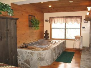 Alpine Cabins - Blairsville vacation rentals