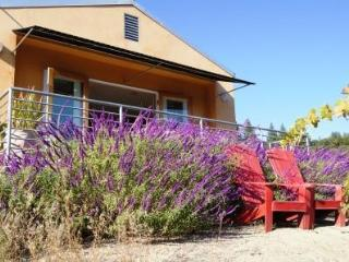 Modern Sophisticated Private Views & Hot Tub - Healdsburg vacation rentals