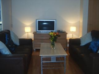 lounge - Glasgow City Centre Royal Flat with free parking - Glasgow - rentals