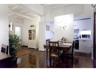 Lovely in Trastevere *AC *wifi *fully accessorized - Rome vacation rentals