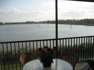 New lanai 2 - LUXURIOUS LAKEFRONT & GOLF CONDO - RENT/STAY FREE! - Bonita Springs - rentals
