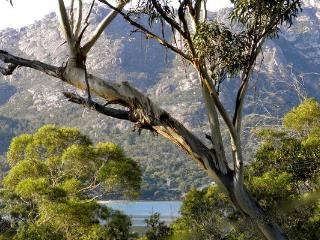 Freycinet Haven - Freycinet National Park vacation rentals